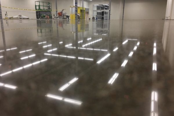 Government – Polished Concrete